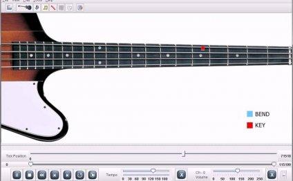 Van Morrison Moondance Bass