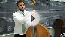 Mike Robbins Sample Double Bass Lessons